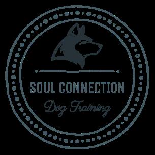 Soul Connection Dog Training